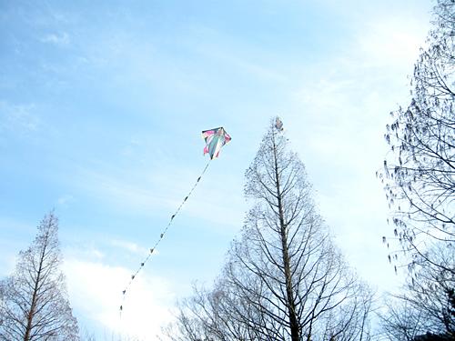 2011年1月「凧をつくろう!」